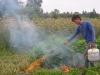 farming-july-oct-09-061